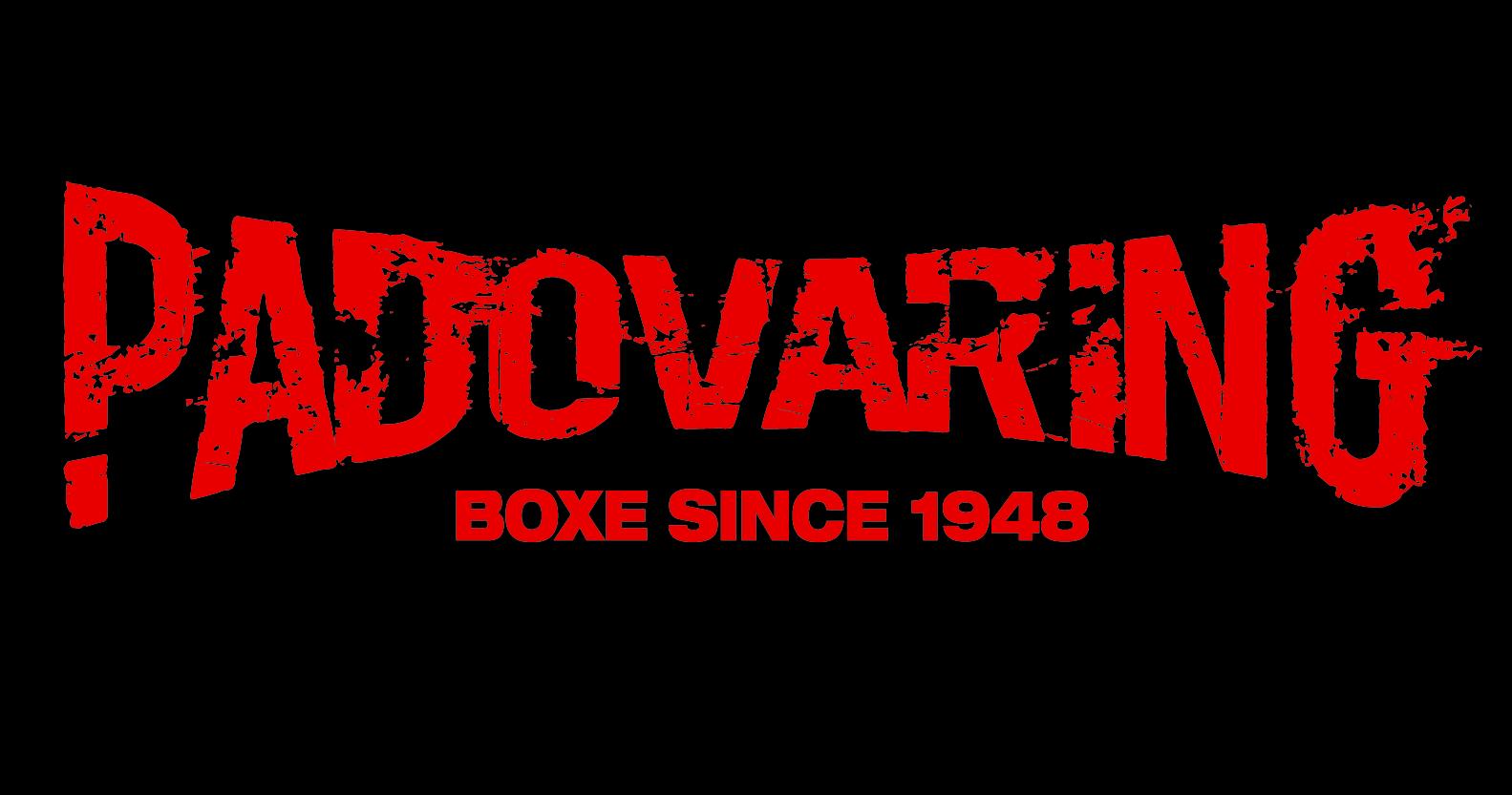 padova-ring_logo